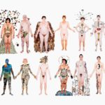 Wellcome Collection – Being Human